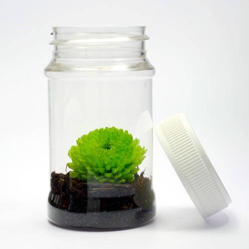 laborbedarf pet dose hoch mit verschluss. Black Bedroom Furniture Sets. Home Design Ideas